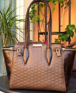 Taupe leather with brown python bag